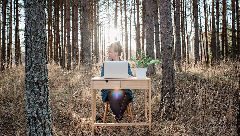 woman travelling working on a desk and laptop in a forest at sunset