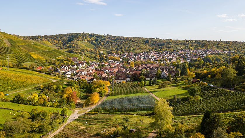 Uhlbach, a suburb of Stuttgart amidst vineyards at the Neckar Valley - beautiful landscape in autum in Germany